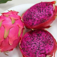 Dragon fruit Seeds, White and Red Pitaya Seeds, 200pcs/pack