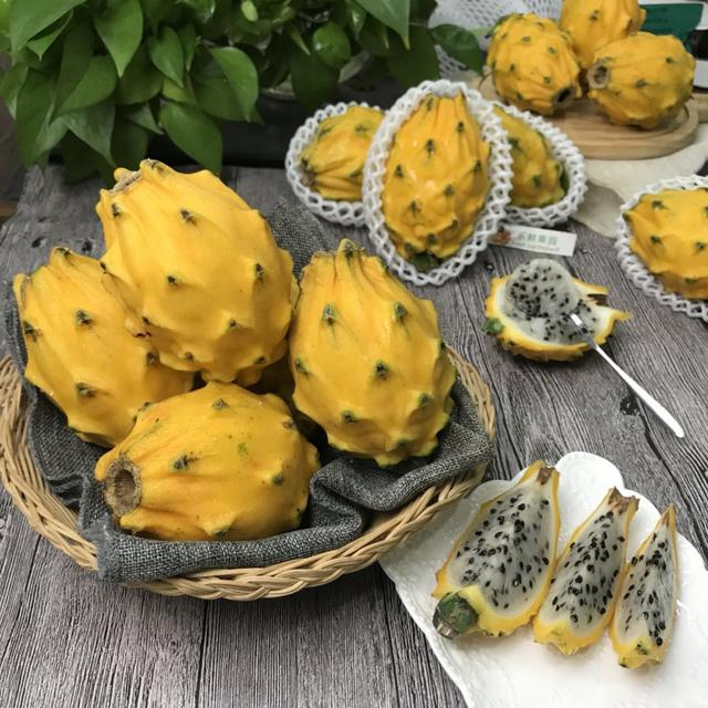 Rare Yellow Pitaya Seeds, Yellow Dragon Fruit Seeds, 50pcs/pack