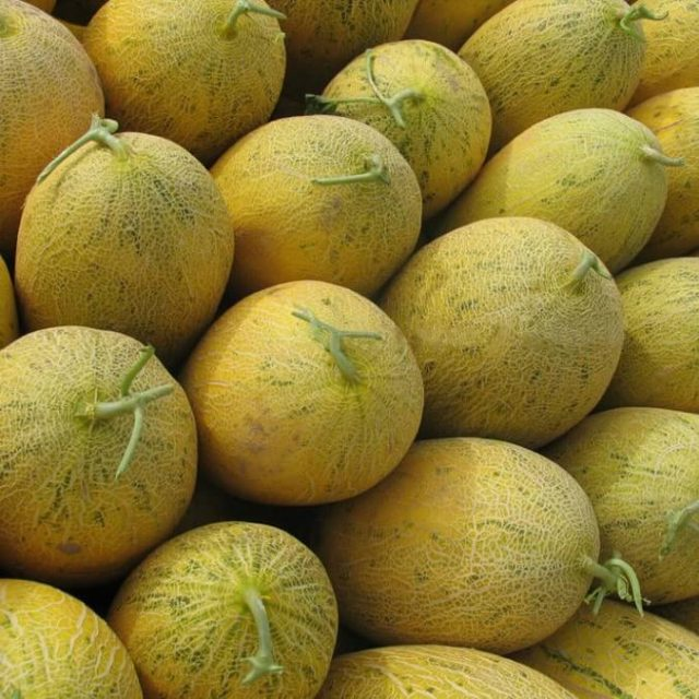 Sweet Hami Melon Seeds, 50pcs/pack