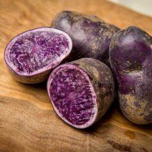 Purple Sweet Potato Seeds,100pcs/pack